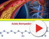 L'ATP citrato liasi, un enzima epatico, è l'ultimo target nella lotta al colesterolo cattivo (LDL).