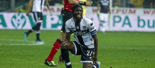 Bologna-Parma: Gervinho potrebbe non farcela, Kulusevski centravanti