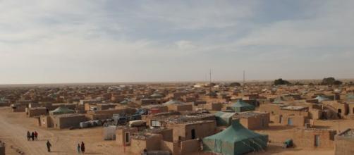 Alerta por posible atentado yihadista en el Sáhara