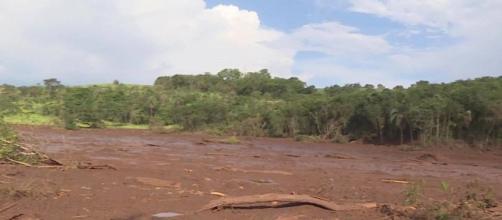 Brumadinho: terrenos atingidos pela lama da Vale têm potencial de mineração. Reprodução/TV Globo