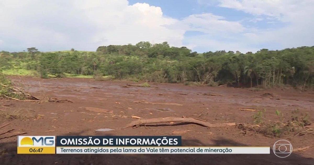 Relatório da ANM alega que Vale omitiu problemas da barragem de Brumadinho - Blasting News Brasil