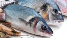 Sanidad advierte que embarazadas y niños menores de 10 años no deben comer atún rojo