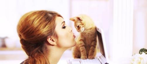 Pourquoi mon chat est jaloux ? - Magazine Avantages - magazine-avantages.fr