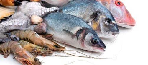Sanidad advierte que embarazadas y niños con menos de 10 años no deben comer atún rojo