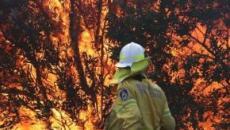 Emergenza incendi, mai così tanti in Australia: oltre 80 roghi, mille chilometri di fuoco