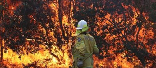 Allarme incendi in Australia, colpa anche dei cambiamenti climatici