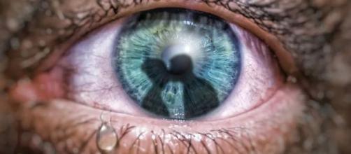 O ciúmes é uma emoção humana onde se manifesta mais forte em alguns signos. (Reprodução/Pixabay)