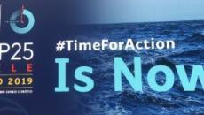Harrison Ford irrumpe en la Cumbre Mundial del Clima COP25