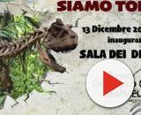 I dinosauri invadono Palermo: gli scheletri di tre giganti della preistoria al Gemmellaro