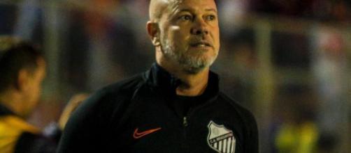 Antonio Carlos deverá receber pacotão de reforços. (Arquivo Blasting News)