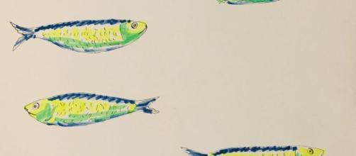 Le sardine anche a Palermo. Movimento spontaneo o cos'altro ... - giornalecittadinopress.it