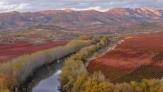 Ingresan a cuatro personas por 'Fiebre Q' en La Rioja