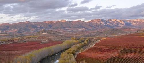 """Ingresan a cuatro personas por """"Fiebre Q"""" en La Rioja"""