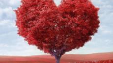 Previsioni astrologiche, classifica sull'amore del 2020: Ariete focoso, flirt per Vergine