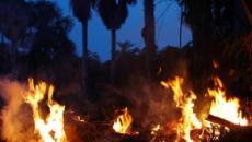 Prefeito de Santarém acusa grileiros de colocarem fogo na região