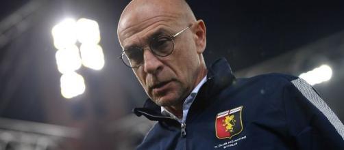 Possibile ritorno al Genoa per Davide Ballardini