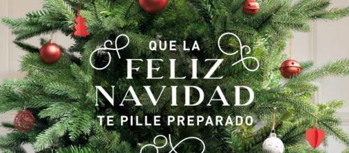 Ya es Navidad en ALDI Supermercados, ven y descubre nuestra marca ... - aldi.es