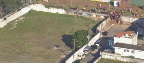 Menino de 10 anos foi atacado por seis cães em SP. (Reprodução/Rede Globo)