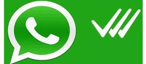 whatsapp smentisce la terza spunta blu