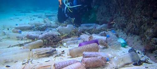 La contaminación del agua afecta a todos. - nationalgeographic.es