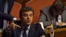 Centinaio (Lega) a senatore Pd: 'Ti faccio un c... così', seduta sospesa (VIDEO)