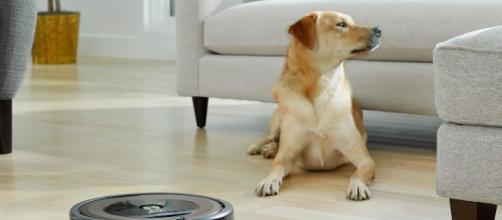 Tutti gli aspirapolvere Roomba, prodotti da iRobot, sono pet friendly