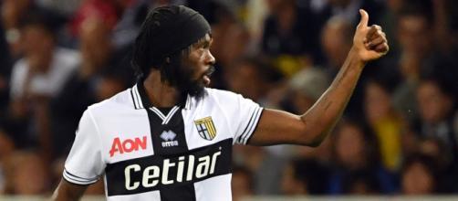 Parma verso il match contro la Sampdoria: Gervinho e Cornelius forse titolari, Inglese out