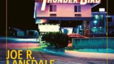 'Caldo in inverno', a gennaio esce il nuovo romanzo per Joe Lansdale