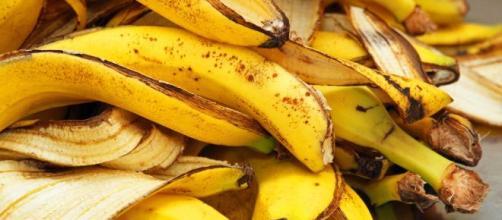 Casca de banana pode ser incluída em diversas receitas e tem alto valor nutritivo. (Arquivo Blasting News)