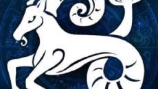 Oroscopo 2020 per il Capricorno: relazione di coppia in risalto, ottima la salute