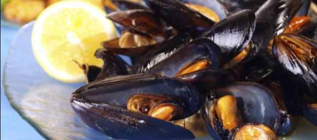 Cozze spagnole contaminate da salmonella: nuova allerta alimentare