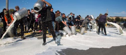 Protesta in Sardegna contro i prezzi del latte, Conte incontra i ... - mediaset.it