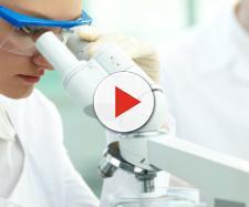 Cancro: biostampante in 3D coltiva tumori per la ricerca - Meteo Web - meteoweb.eu