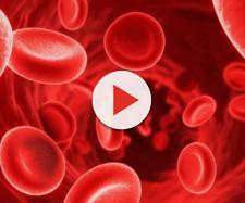 Danimarca, mamma preleva per 5 anni il sangue di suo figlio e lo getta nel water