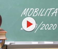 Mobilità docenti: il 40% dei posti è riservato ai trasferimenti interprovinciali
