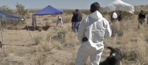 Hallan 69 cuerpos en una fosa clandestina en Tecomán. - noticieropty.com