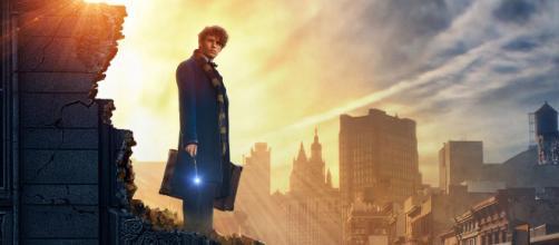 Spin-off de Harry Potter pode ter sequência no Brasil. (Foto/Divulgação/Warner Bros.)