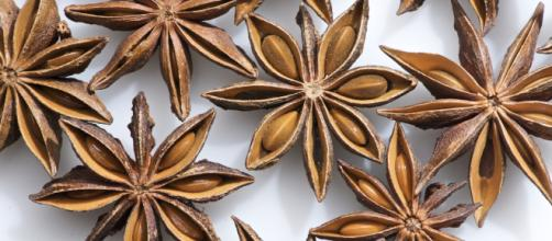 Star anise series [Image via: THOR - Flickr]