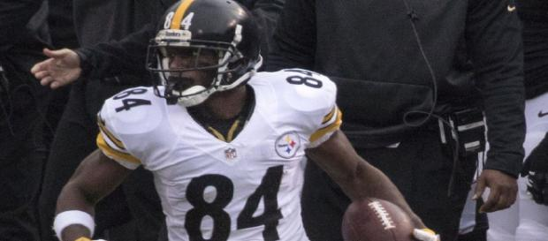 Antonio Brown could be on the way to Green Bay. - [Keith Ellison / Flikr]