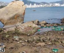 Se retira el mar en playa de Acapulco hasta 20 metros. - ahoraguerrero.mx