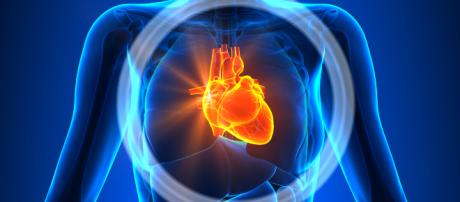 Las enfermedades cardiovasculares pueden prevenirse con dietas bajas en grasas y ejercicios físicos. - babygest.es
