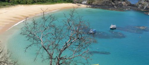 Praia do Sancho (Reprodução/flightnetwork.com)
