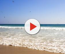 Cesena, rapporto intimo in spiaggia in pieno giorno: rischiano una denuncia