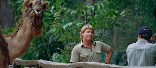 PETA has drawn fire for its stance on Steve Irwin [Image via Bernard Dupont/Wikimedia Commons]