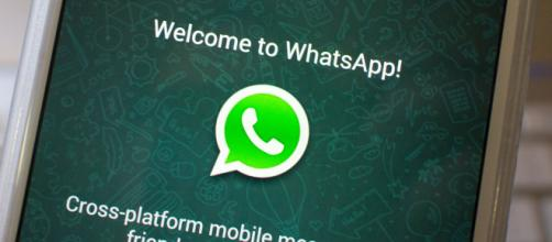 10 anos de Whatsapp. (Foto: Reprodução)