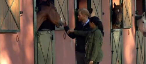 Meghan and Harry enjoy time at the stables. - [Today / YouTube screencap]