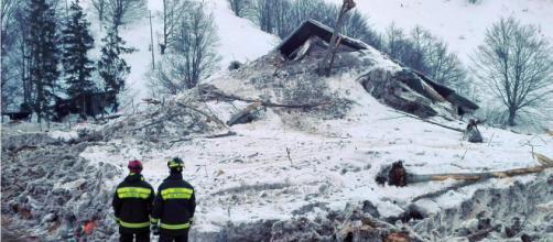 È morto il cane eroe che salvò tre bambini a Rigopiano