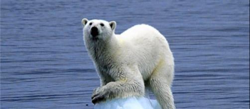 Consequências das mudanças climáticas. (Reprodução)