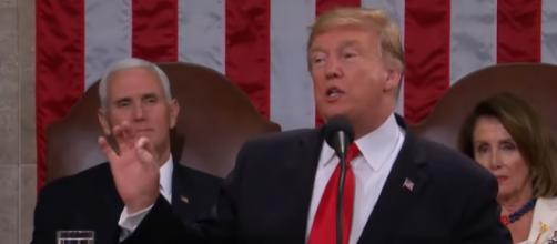 In 2nd State of the Union, Trump says 'walls work,' announces next NK summit. [Image source/ABC News YouTube video]
