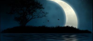 Oroscopo di domani 15 febbraio, Luna in Cancro: ottimo fine settimana per Toro e Leone